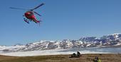 Paleontólogos descobrem nova espécie de peixe pulmonado na Gronelândia, com 210