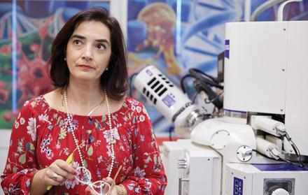 """Professora Elvira Fortunato recebe a """"Medalha Blaise Pascal para a Ciência dos M"""