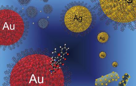 Investigação do grupo BIOSCOPE é capa da revista da Wiley ChemPlusChem