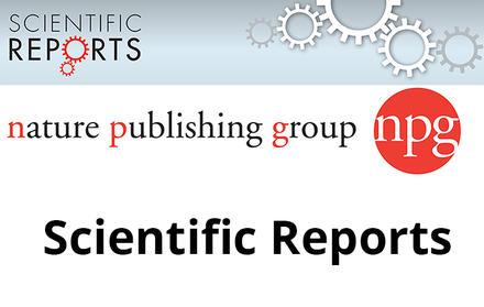 """Professor Elvira Fortunato invited to be part of the Editorial Board of """"Scienti"""