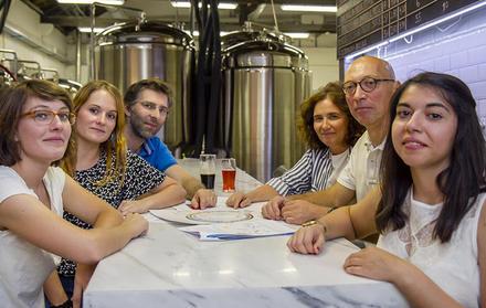 Genomic study reveals surprising diversity of top-fermenting beer yeasts
