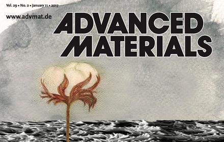 Investigadores do CENIMAT com trabalho na capa da Advanced Materials
