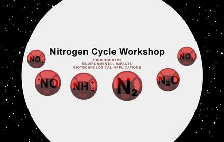 Nitrogen Cycle – 28 de Março de 2018
