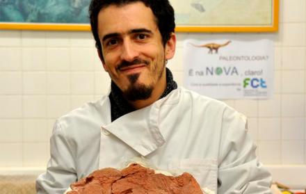 Paleontólogos da FCT NOVA descobrem primeiros fósseis de placodontes conhecidos