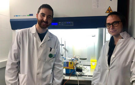 Researchers at UCIBIO use smart gelatin as an electronic nose sensor