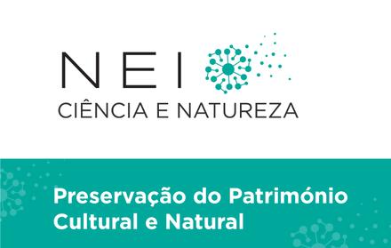 NEI 2020