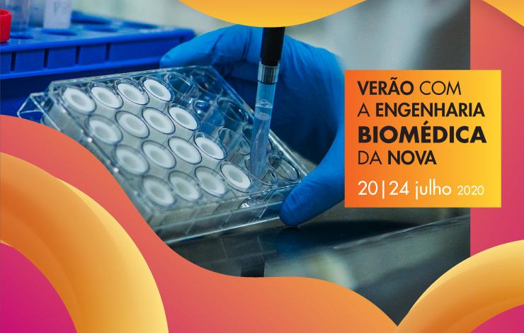 """""""Verão com Engenharia Biomédica da NOVA"""""""