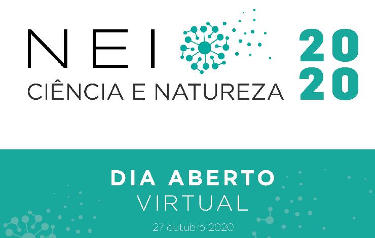 nei dia virtual 2020