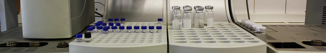 PhD in Bioenergy