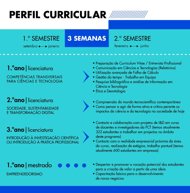 Perfil Curricular
